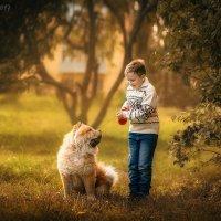 Осенняя прогулка :: Таня Тришина