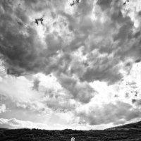 фотопрогулка ) :: Sergey Baturin