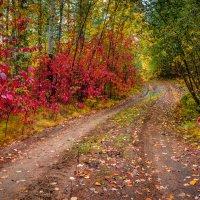 Autumn :: Boris Altynnikov