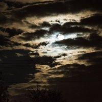 Луна :: Максим