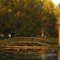 Летний сад :: Олеся Ефанова