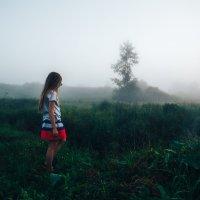 алиса в тумане :: Андрей Афонасьев