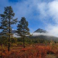 Краски Севера :: Михаил Потапов