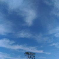 Ах, какое небо! :: Евгений