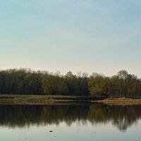 Вечер ранней весны. :: Андрий Майковский