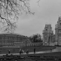 Жизнь в городе :: Светлана Ларионова