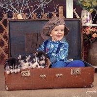 Макс и малыши Хаски :: Наталия Каюшева