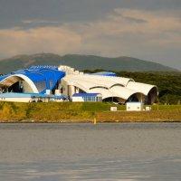 Приморский океанариум :: Александр Морозов