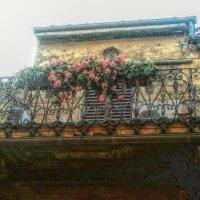 Серенадный балкон! :: Натали Пам