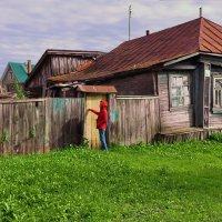 Кто кто в теремочке живёт :: АЛЕКСАНДР СУВОРОВ
