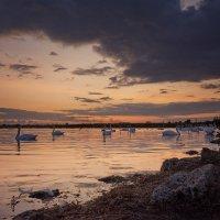 Закат на озере. :: Анатолий 71