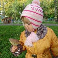 Вот это гриб ! :: Мила Бовкун