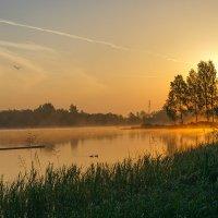 Вот и солнце встало... :: Galina