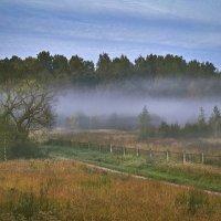 Утренний туман . :: Viacheslav Birukov