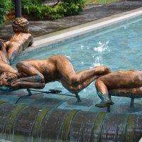 Спящие на воде :: Николай Танаев