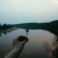 Закат над Припятью :: Anna Sigida