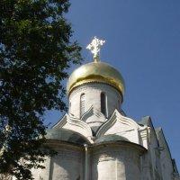 Собор Рождества Богородицы 1405 г :: Анна Воробьева