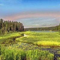 Озеро Толмоозеро :: Виктор Заморков