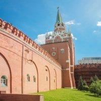 Вид на Троицкую башню Московского Кремля. :: Анатолий Щербак