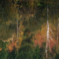 Осенняя акварель :: Нина северянка