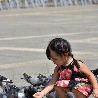 Голуби :: Андрей Пастухов