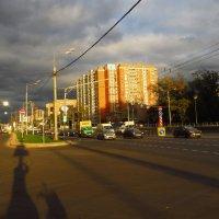 Жду своего зеленого света :: Андрей Лукьянов