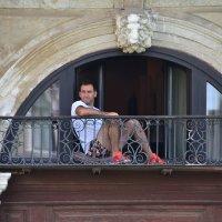 Балконный  наблюдатель :: Николай Танаев
