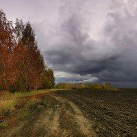 Осеннее ненастье 2 :: Сергей Жуков