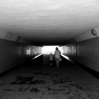 Дорога к свету :: Тамара Лисицына