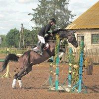 на  тренировках по конному :: Георгий Никонов