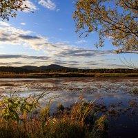гора Егоза, осенний взгляд :: Владимир Родионов