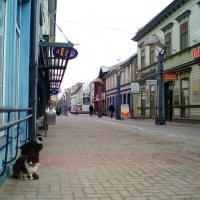 Senoji Liepoja / Liepāja (Latvia). Old town :: silvestras gaiziunas