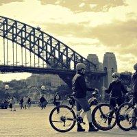 Мост Сиднейской Гавани (Sydney Harbour Bridge) :: Tatiana Belyatskaya