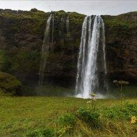 Водопад Сельяландсфосс (Seljalandsfoss) :: Shapiro Svetlana