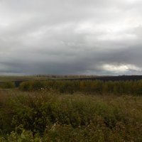 Пасмурный сентябрь :: Ольга