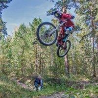 Велосипед :: Владимир Габов