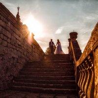 «Podgoretsky Castle». :: Romanchuk Foto