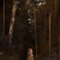 В лесу :: Ирина Скобелева