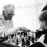Шахматный турнир :: Андрей Костров