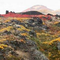 Осень на Камчатке :: Сергей Козинцев