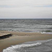 Сегодня море необычно тихо, лишь волны медленно скребутся о песок :: Маргарита Батырева