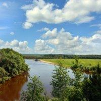 Яр,  река  Тара. :: Геннадий С.