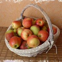 Корзина с яблоками :: Nina Yudicheva