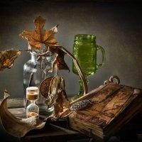 Про сухие листья и остальное :: mrigor59 Седловский