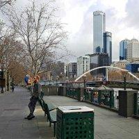 Австралия, Мельбурн :: Tatiana Belyatskaya