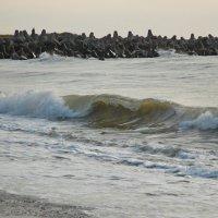 Волна :: Teresa Valaine