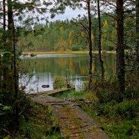 озеро Медвежье :: Анжела Пасечник