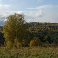 Осенние дали :: Валерий Чепкасов
