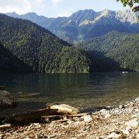 Озеро Рица. Абхазия. :: Ольга Князева
