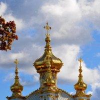 Золотые купола Петергофа :: Ольга Русанова (olg-rusanowa2010)
